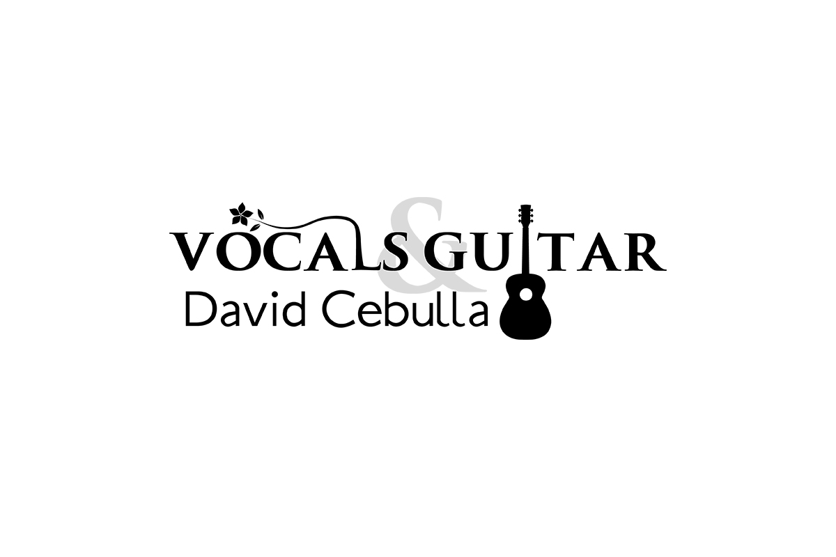 Logo von Vocals & Guitar David Cebulla